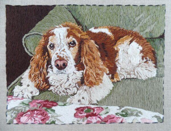 Custom Square Pet Portrait with Name & Trim